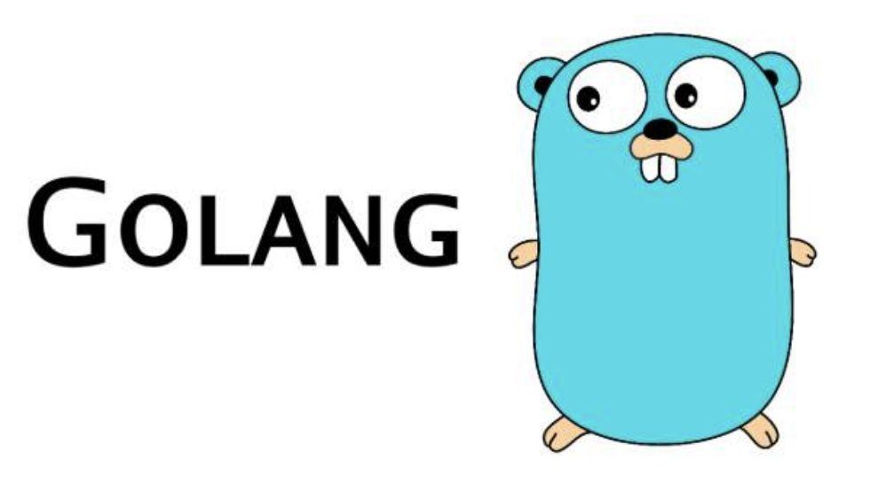 Go 语言基础快速入门掌握基本语法